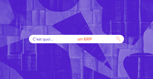 header-article-erp-definition